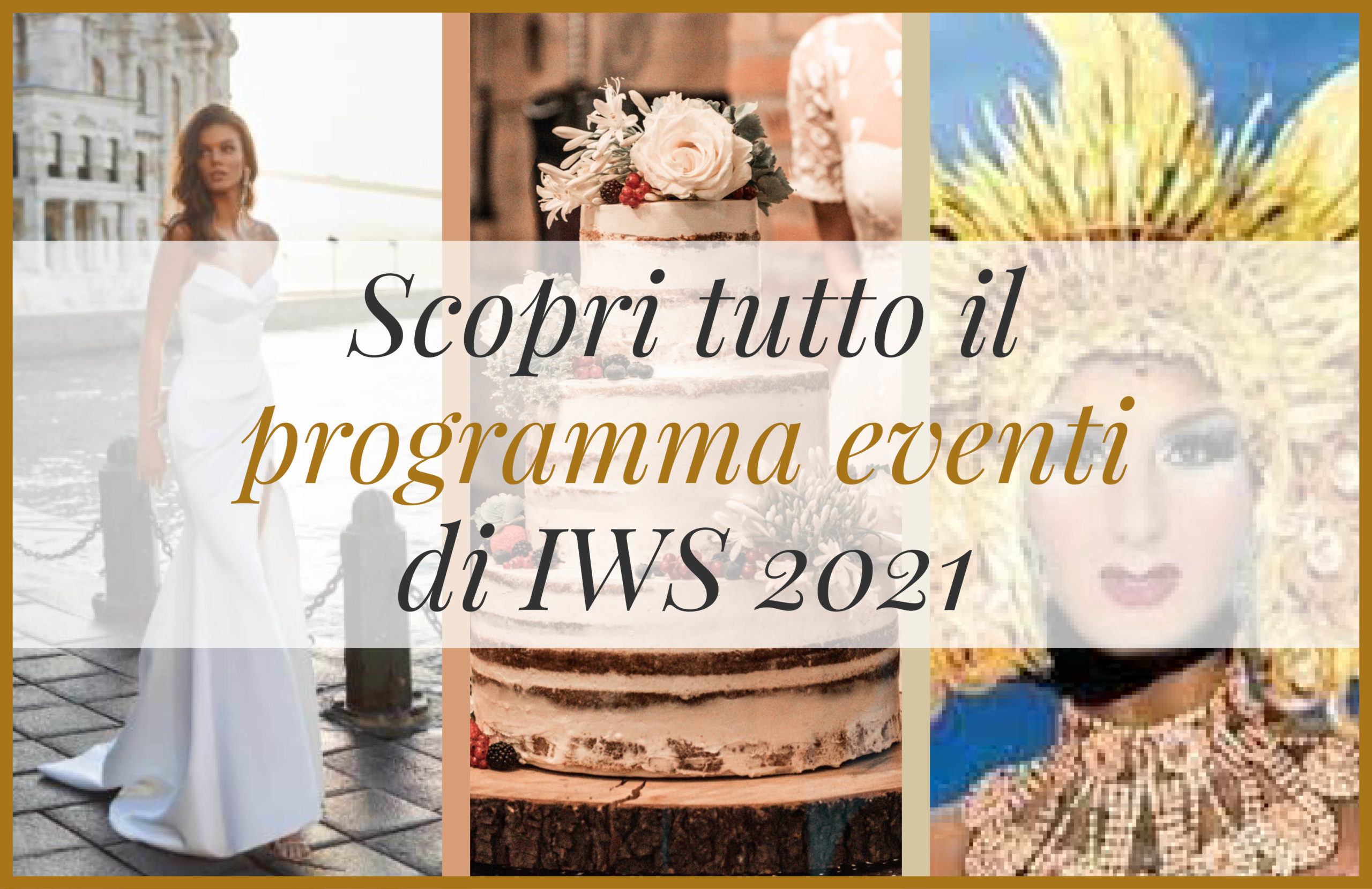 Programma IWS